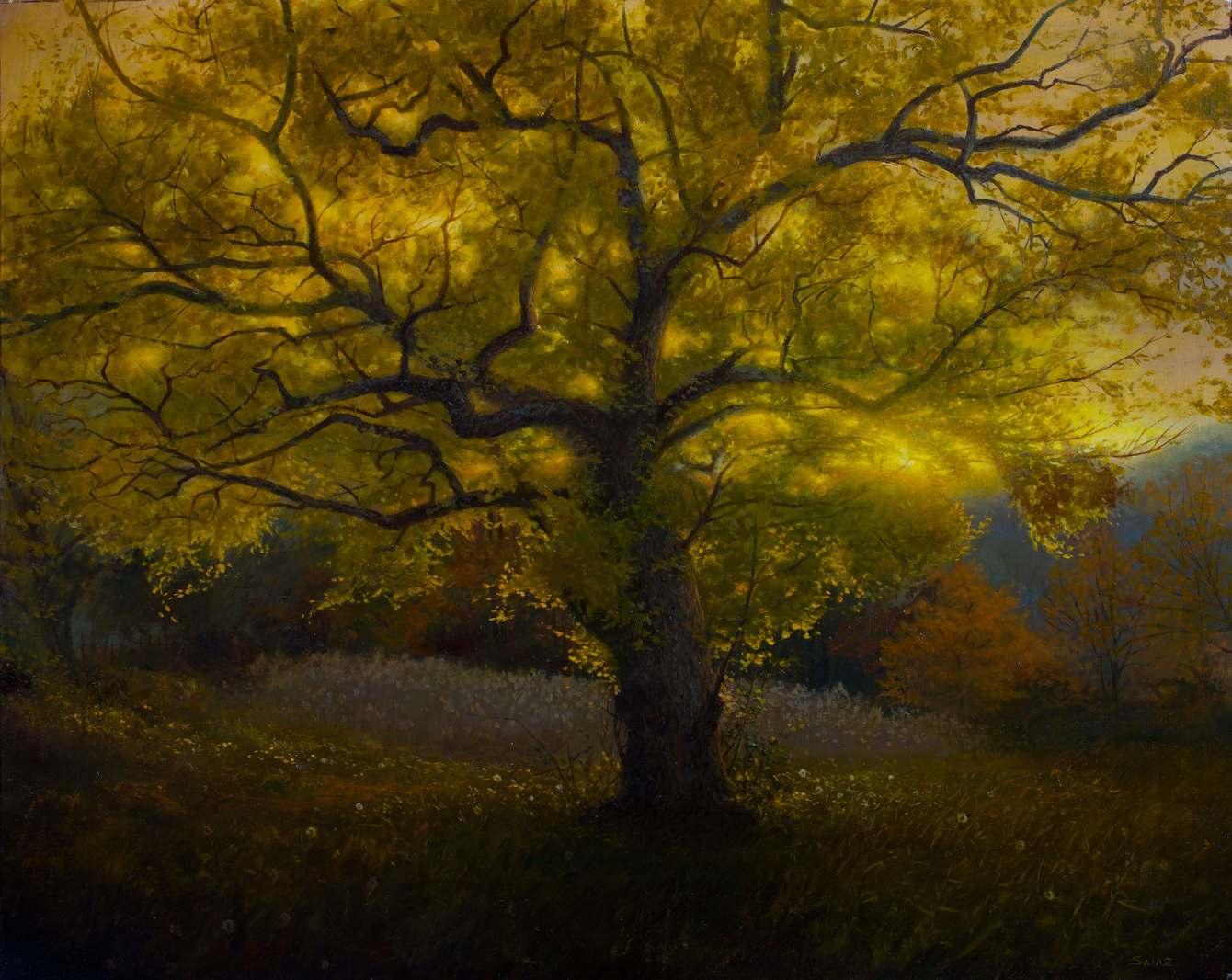 Buddah-Tree-OIl-on-Linen-2016-16-x-20-copy_1340_c.jpg