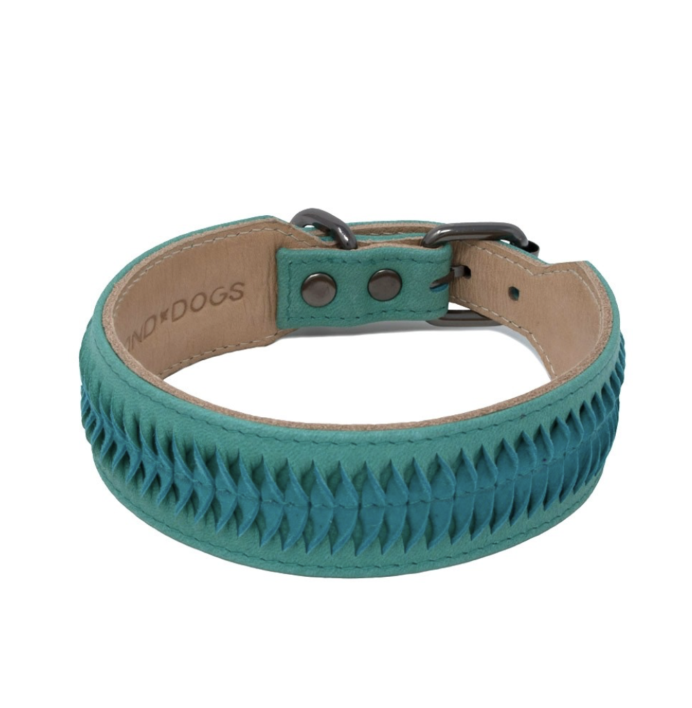 Leather Dog Collar Turquoise