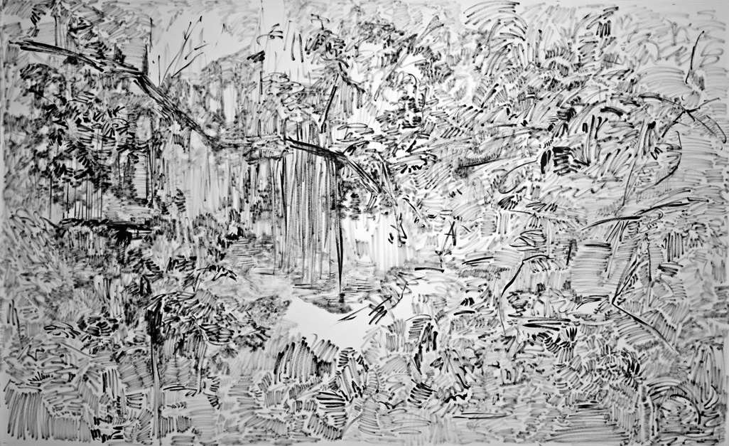 The Hidden Dimension and Other Observations No. 133, 2016-2017; ink on paper; 60x96 in.