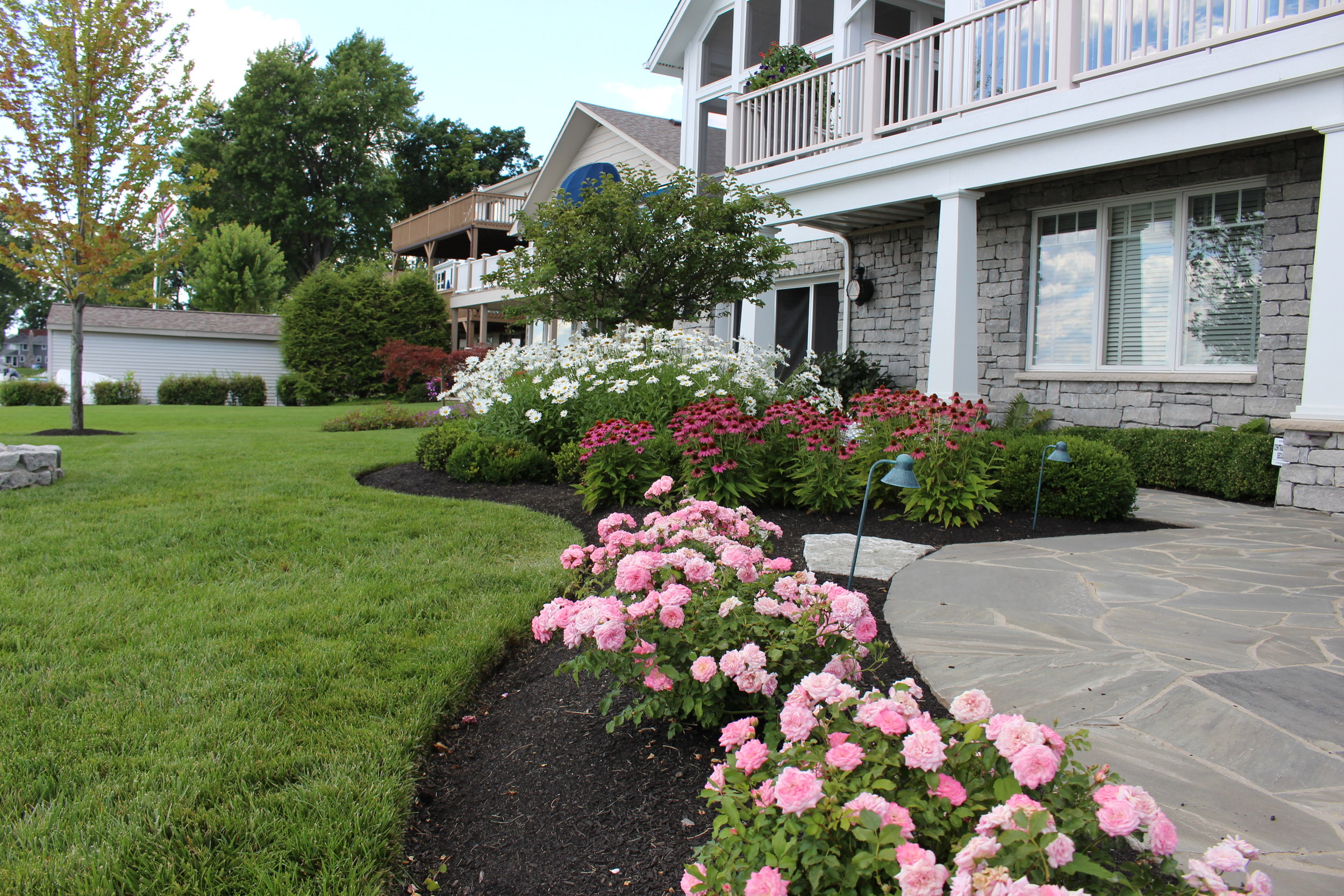 Softscape - Full landscape plantings, accent plantings, large tree installation, new lawn- sod or seed, mulch.