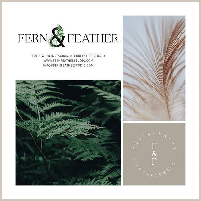 Hi Friends! ⠀⠀⠀⠀⠀⠀⠀⠀⠀ Thuy Pham Photography is now Fern & Feather Studio!! @nealhowland and I are happy to announce we're joining forces to offer the best in wedding photography and cinematography. ⠀⠀ ⠀⠀⠀⠀⠀⠀⠀ Moving forward, all wedding related posts will be on the new @fernfeatherstudio page. This account will be more for personal/travel posts. ⠀⠀⠀⠀⠀⠀⠀⠀⠀ Thanks! ⠀⠀⠀⠀⠀⠀⠀⠀⠀ #newname #newbusinessname #weddingphotography #bostonweddingphotographer #newaccount #followthenewaccount