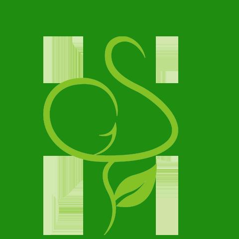 SolGreen Disaster Relief Logo.png