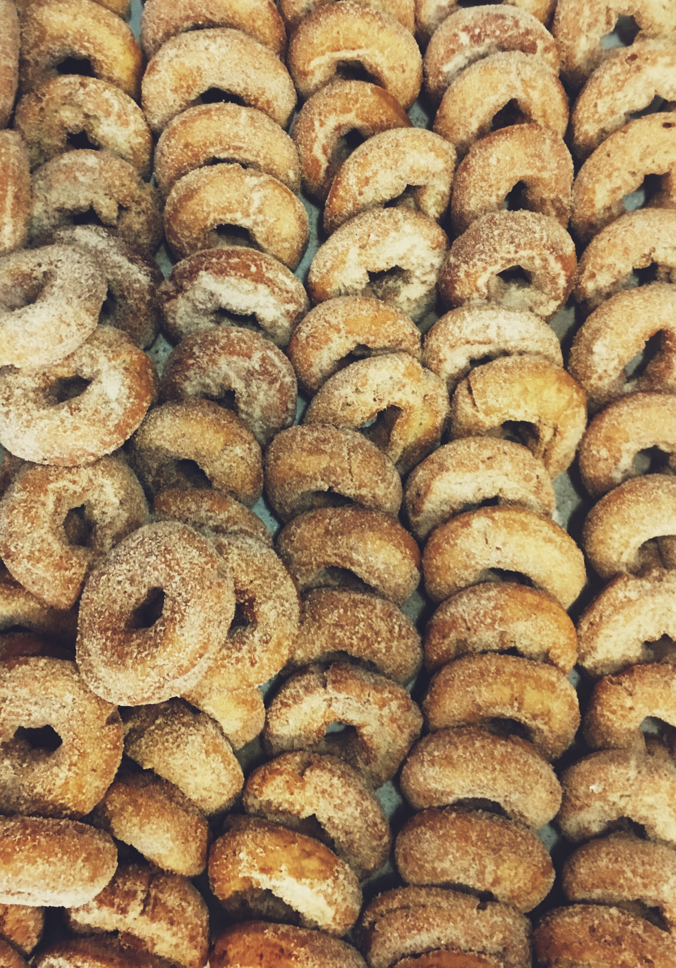 Apple cider donuts baked fresh daily at Russo's.
