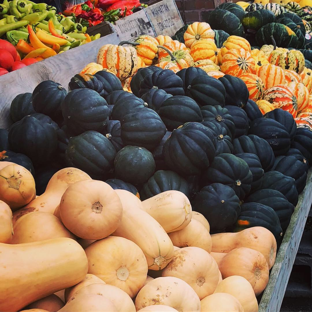 Fall squash and peppers at Russo's