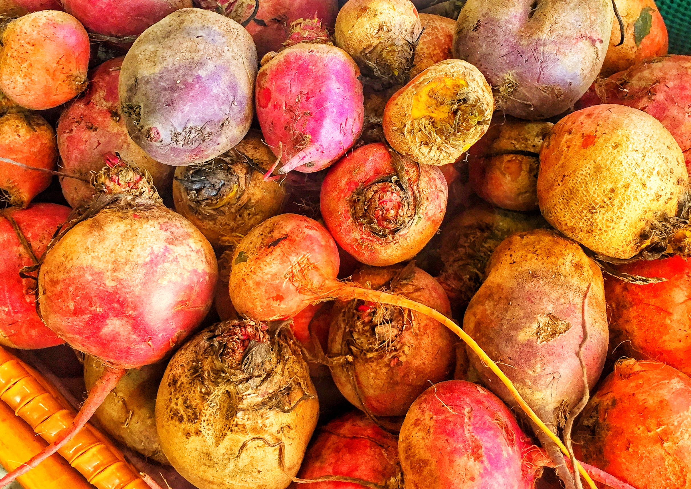 Organic rainbow beets at Russo's