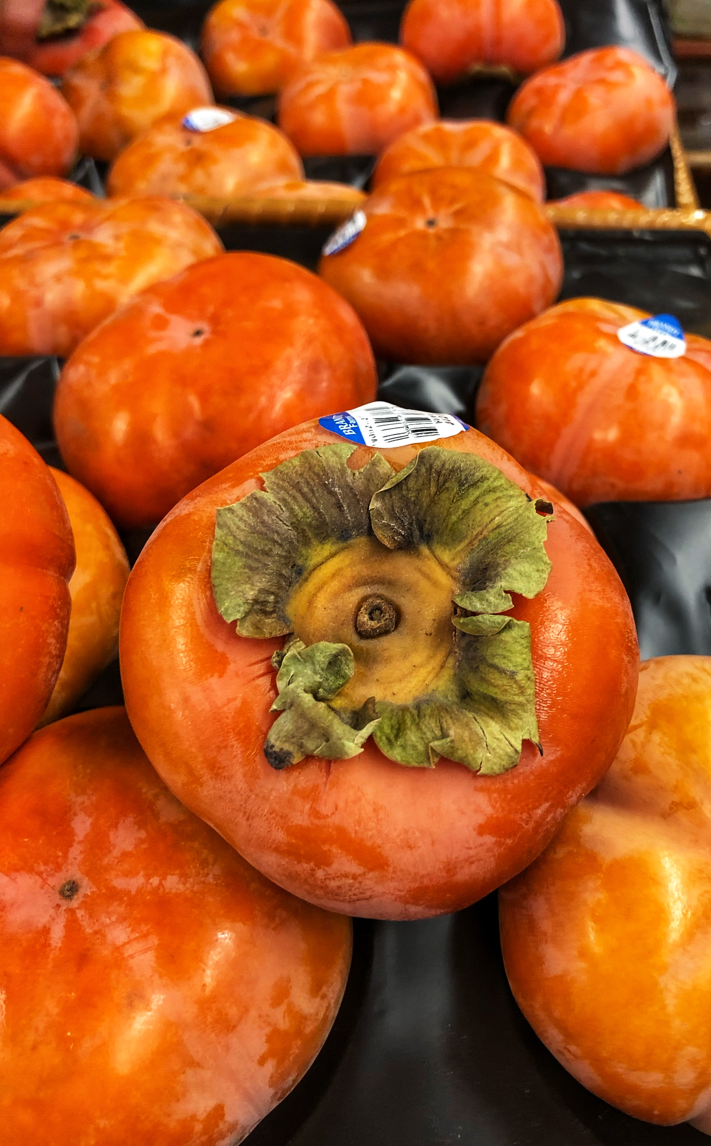 Fuyu persimmons at Russo's.