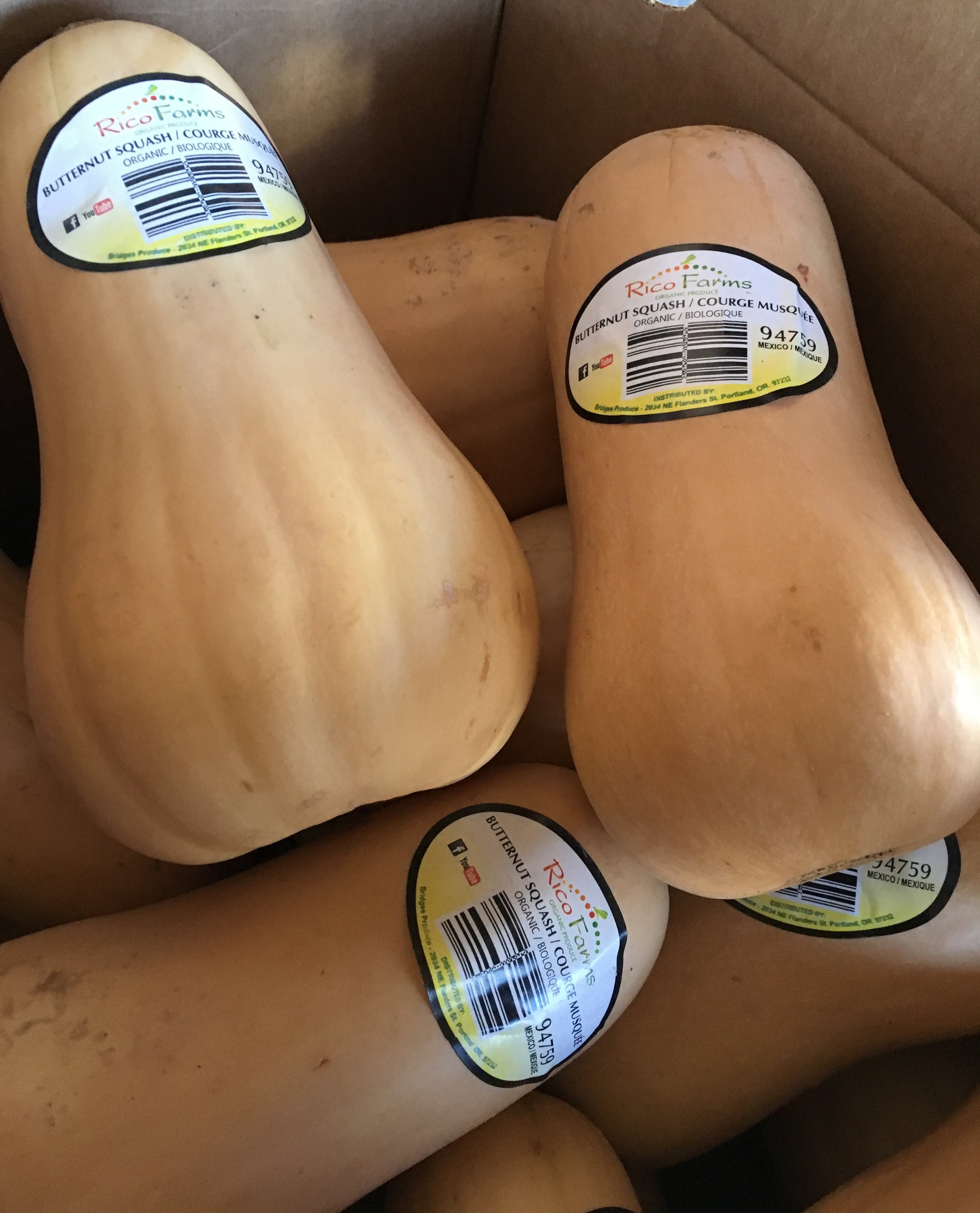 Organic butternut squash on special this week at Russo's.