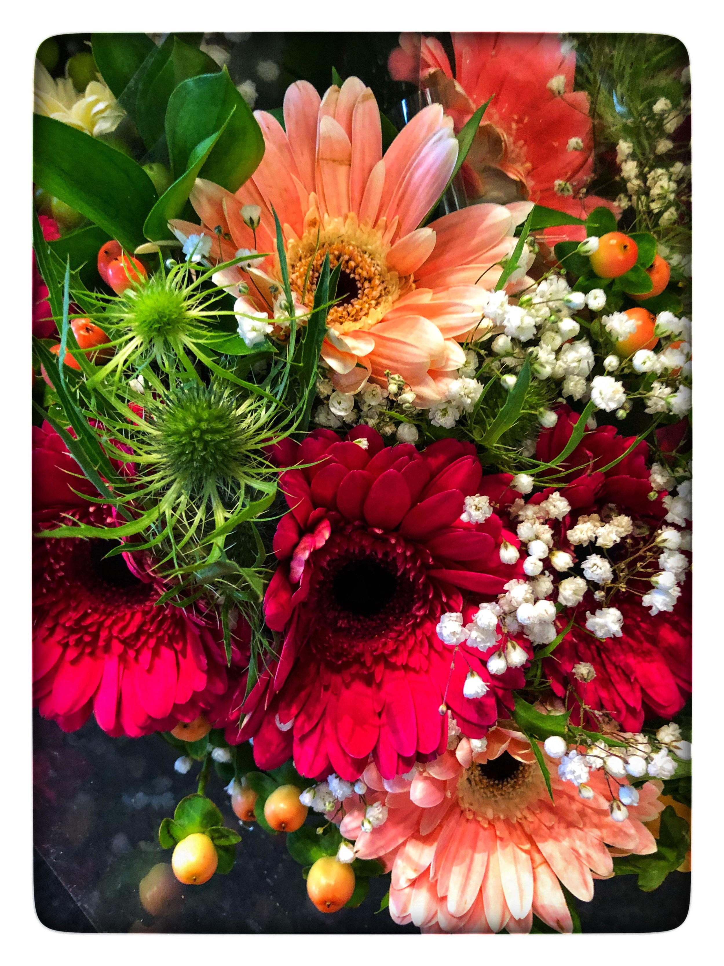 Cheerful and vibrant holiday flowers made by our florists at Russo's.