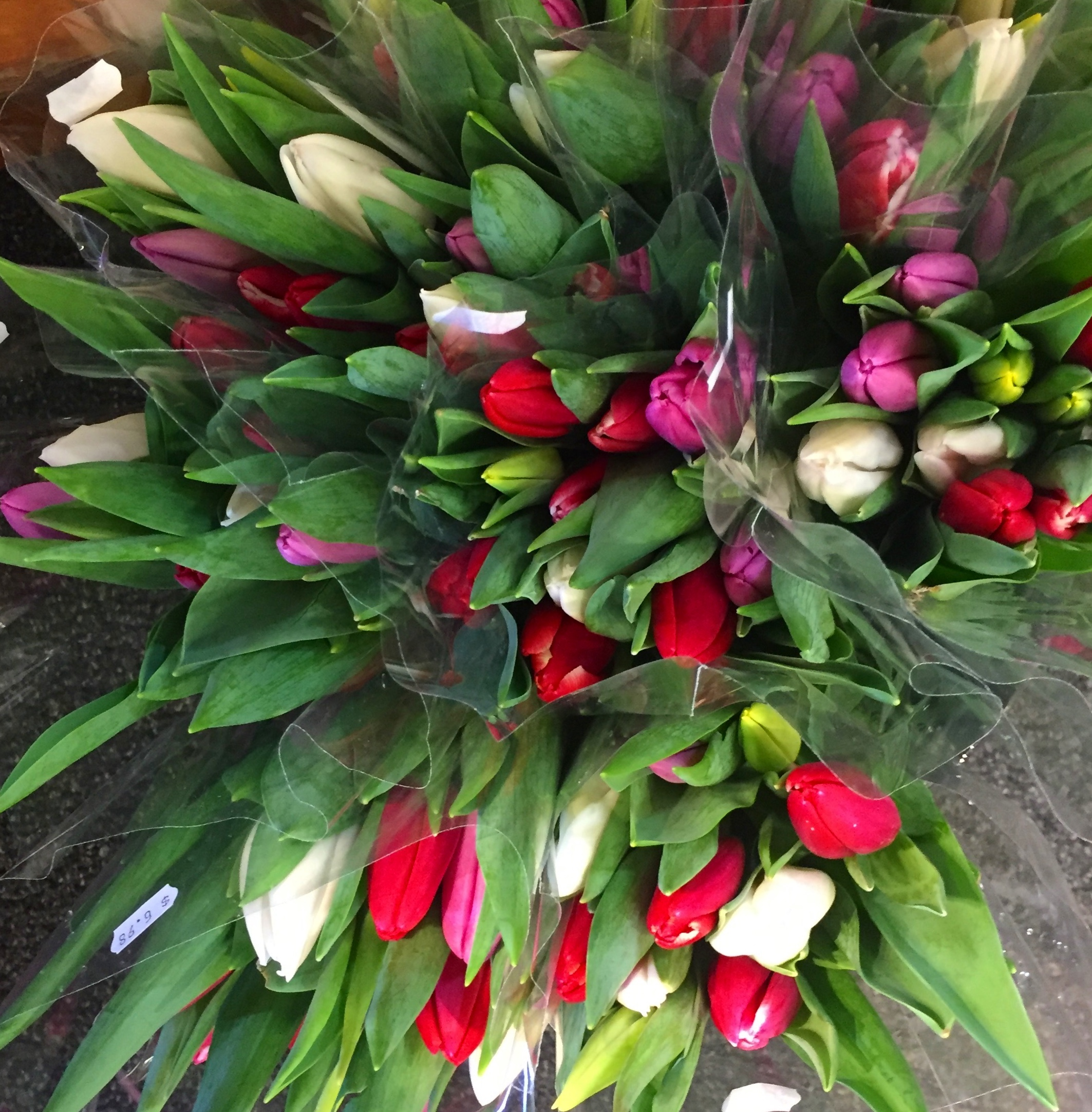 Vibrant, freshly harvested tulips available at Russo's.
