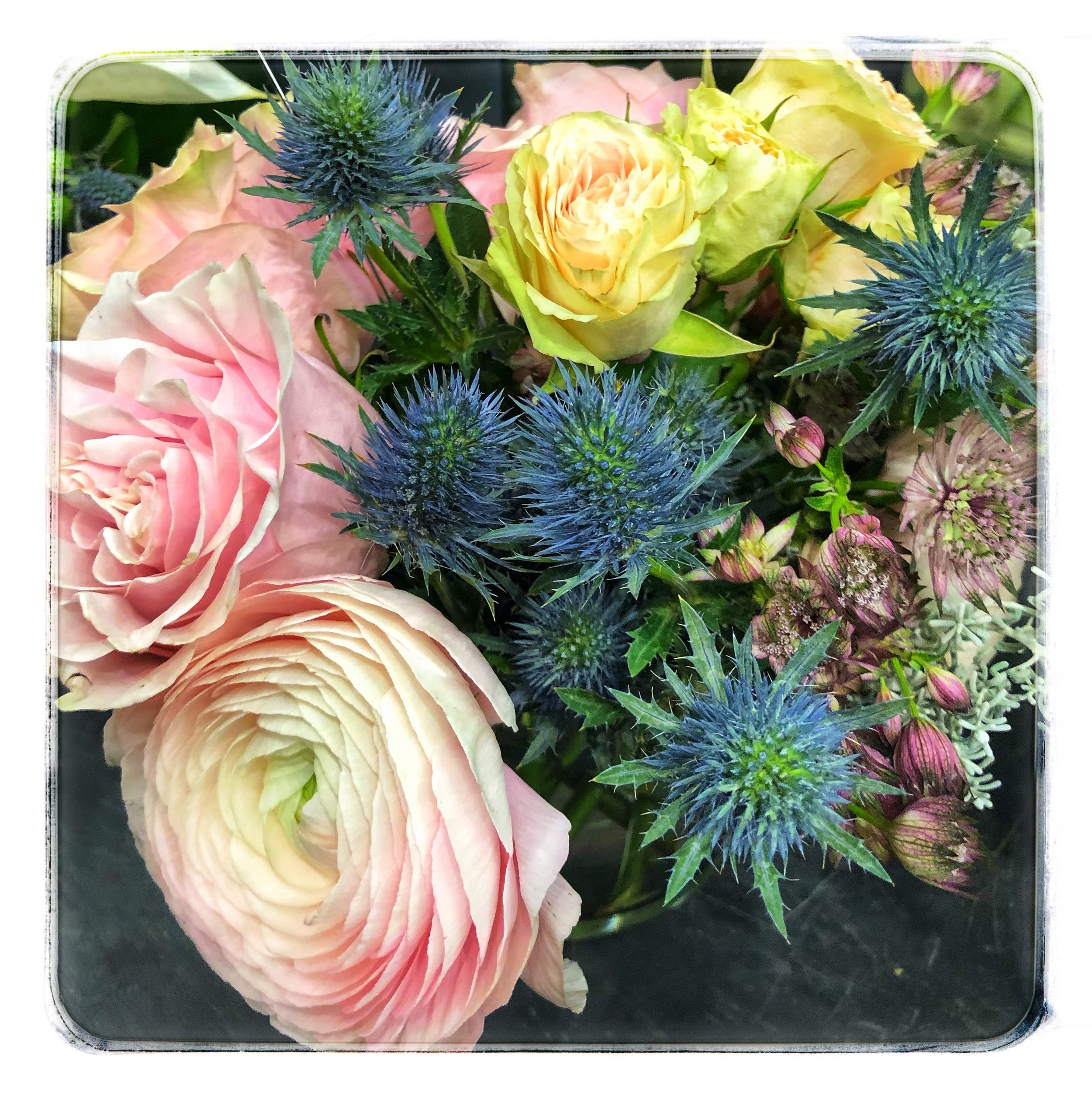 Rose and Eryngium floral arrangements available in our store.