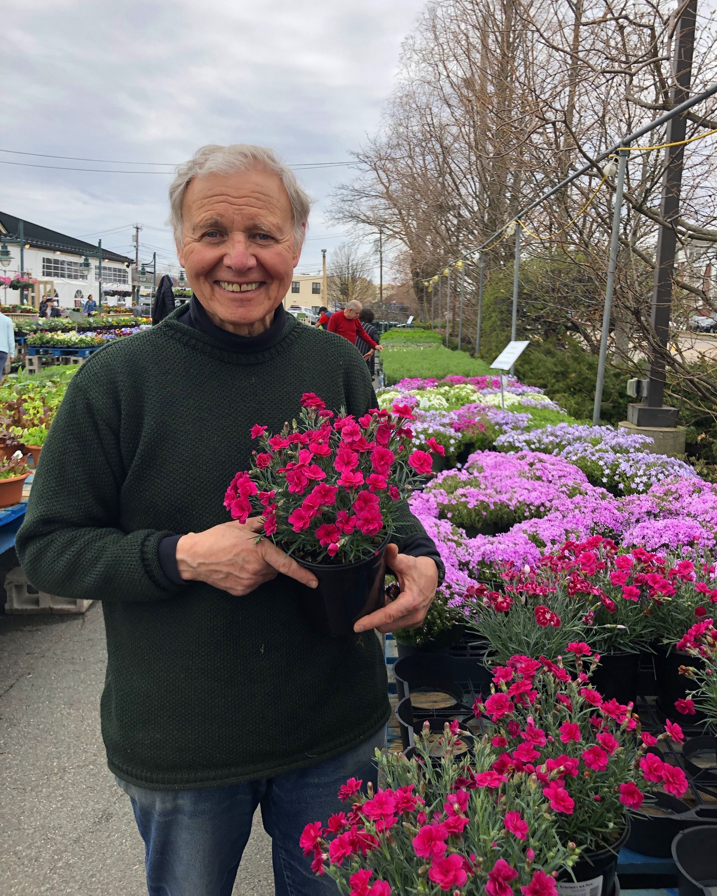 Tony Russo with the vibrant Dianthus plants. Check out this week's Tony's Tips on plants and herbs!