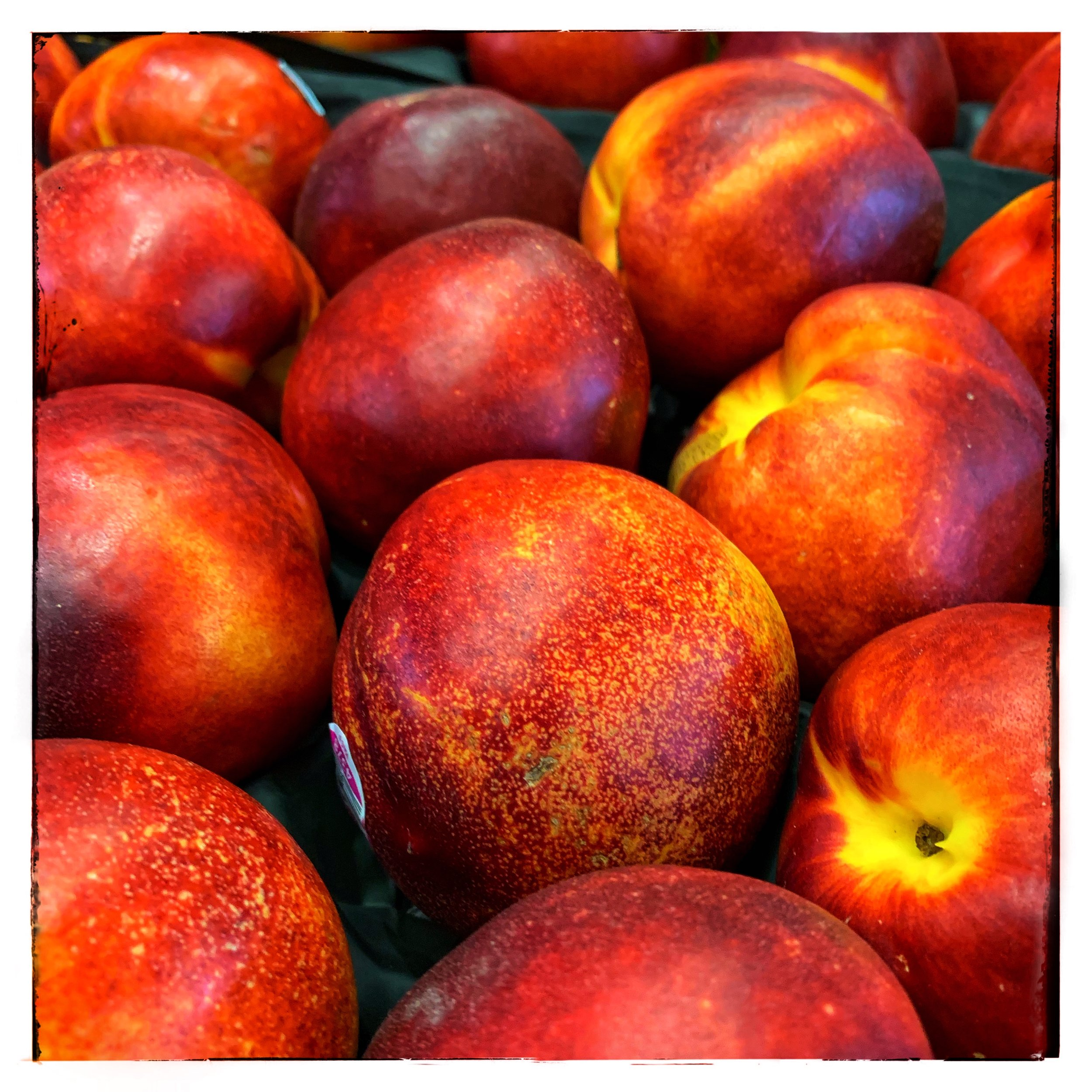 Tree-ripened nectarines and peaches on special this week at Russo's!