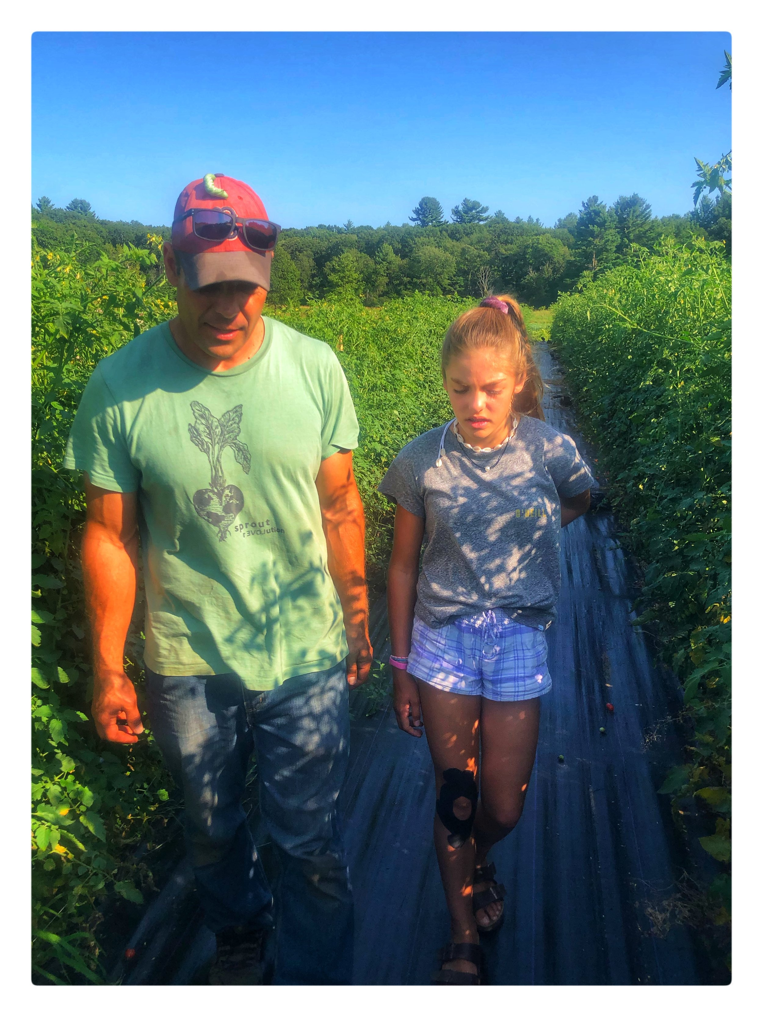 Andrew Rodgers and his daughter Phoebe, who works at Clark Farm Market, walk the fields of Clark Farm in Carlisle.
