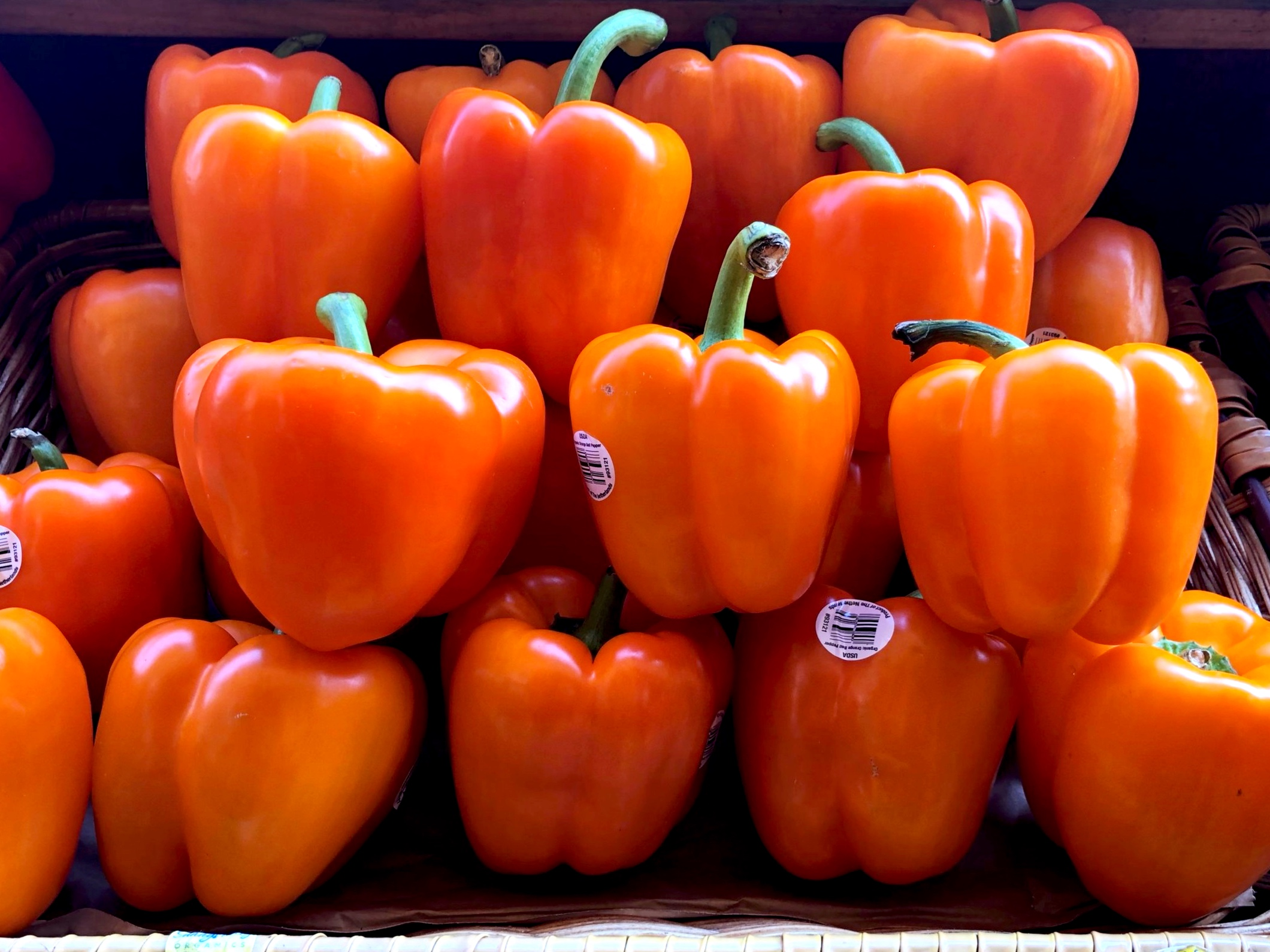 Organic orange peppers at Russo's.