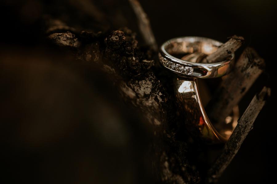 albumweddings_madeira_wedding_photographer2215.jpg