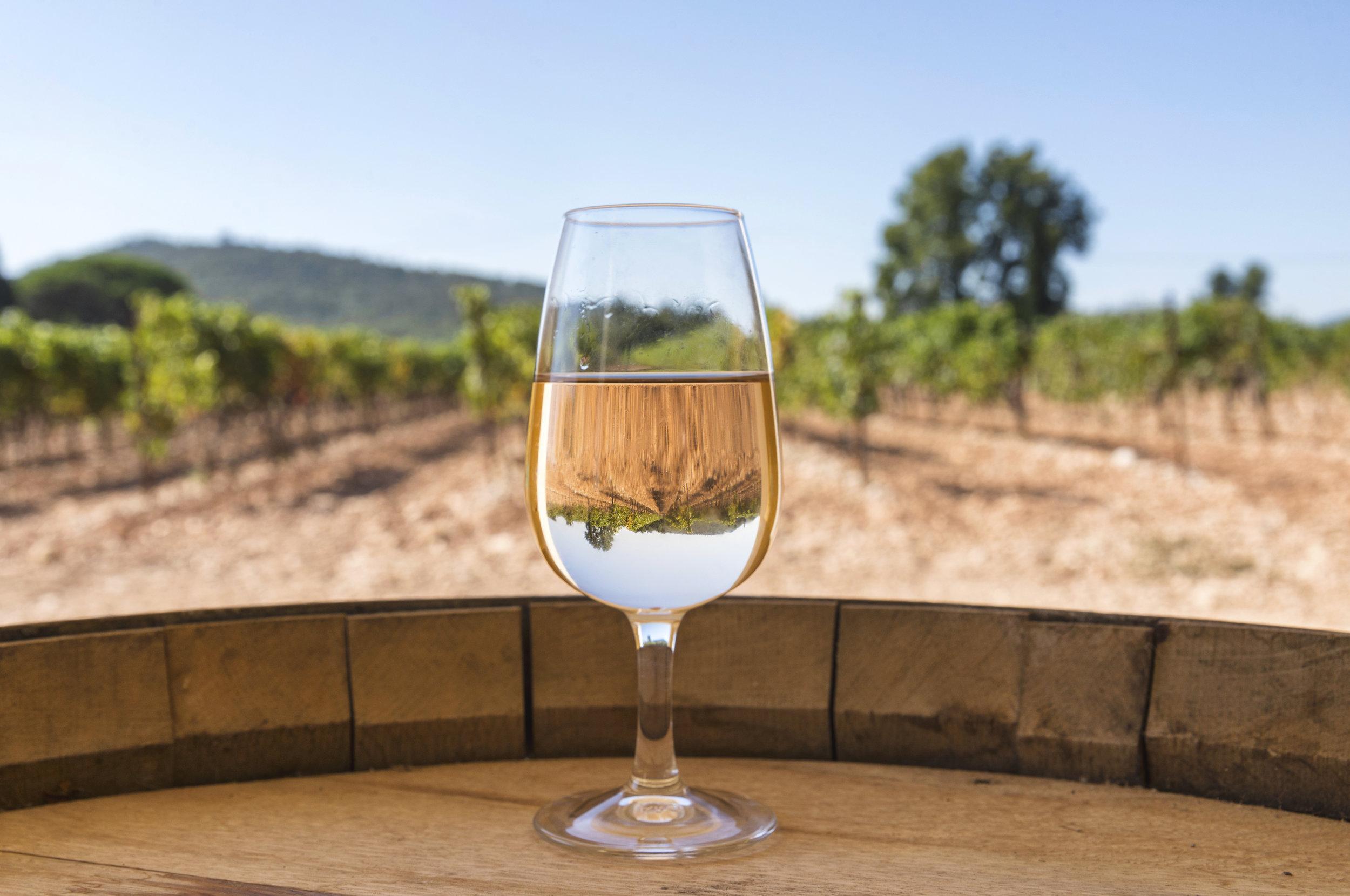 Côtes de Provence - Key Facts: