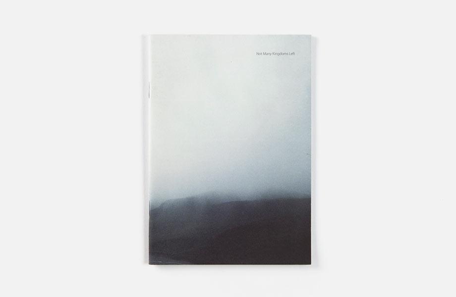 Not Many Kingdoms Left , published by Pogo Books, 2010