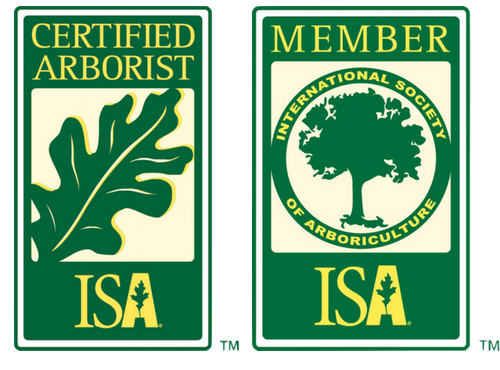 David Schaldach is a Certified Arborist and member of the  International Society of Aboriculture .