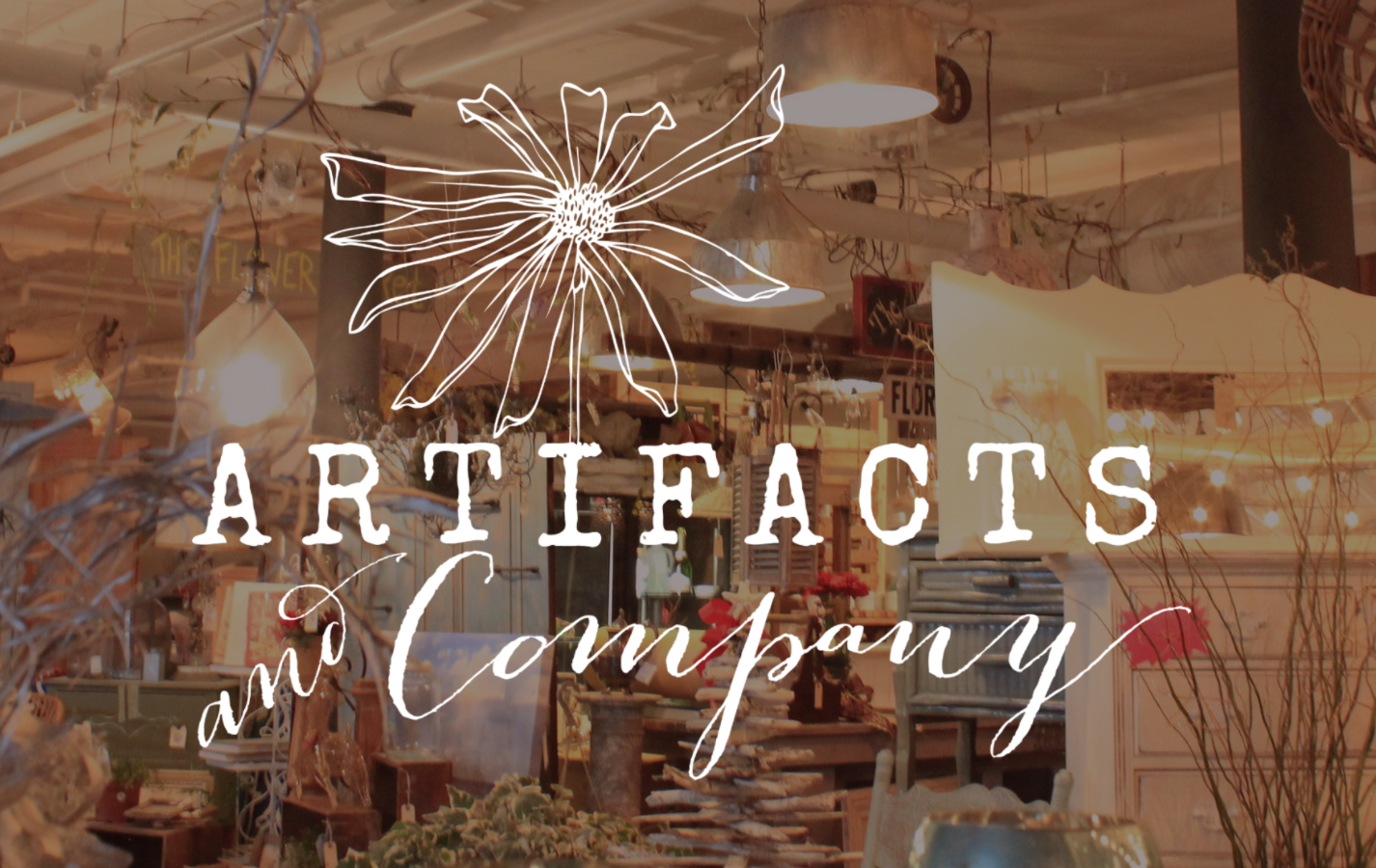 Artifacts and Company - 100 North Bay Avenue, Beach Haven NJ 08008Open Daily 10-5