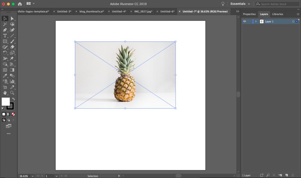 Lauren Aloia Designs Squarespace Web Designer How To Edit A Jpeg Image Using Adobe Illustrator