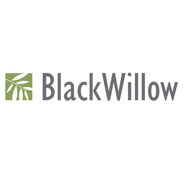 Here's a recent website I designed for BlackWillow Group, a boutique advisory firm in Palo Alto, CA. •••••• BW's website is clean, minimal, and has simple navigation. I also included a lot of tree imagery to represent their brand 🌲 and give it that boutique-y feel. See more of it on my website or at blackwillowgroup.com. • • • #squarespace #squarespacedesigner #squarespacedesign #webdesign #websitedesign #webdesigner #creativedesign #minimaldesign #minimalistdesign #smallbusinesswebsite #smallbusiness #freelancer #customwebsite #parralax