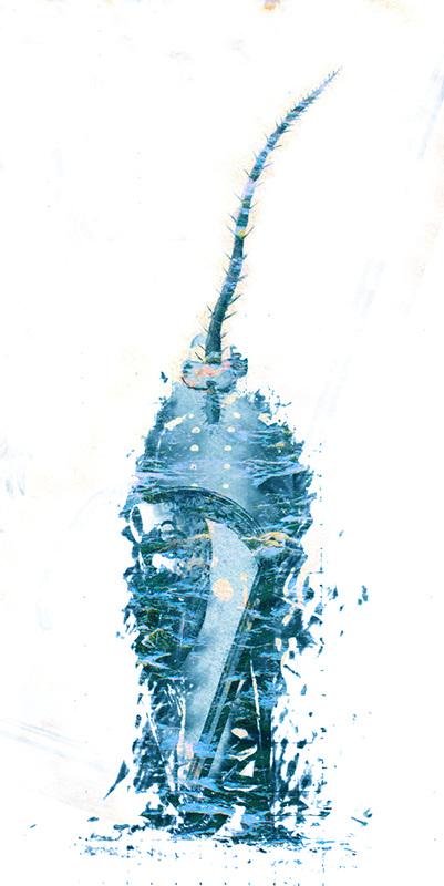 Diving Deep (2013)