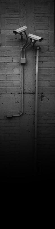 Surveillance (2013)