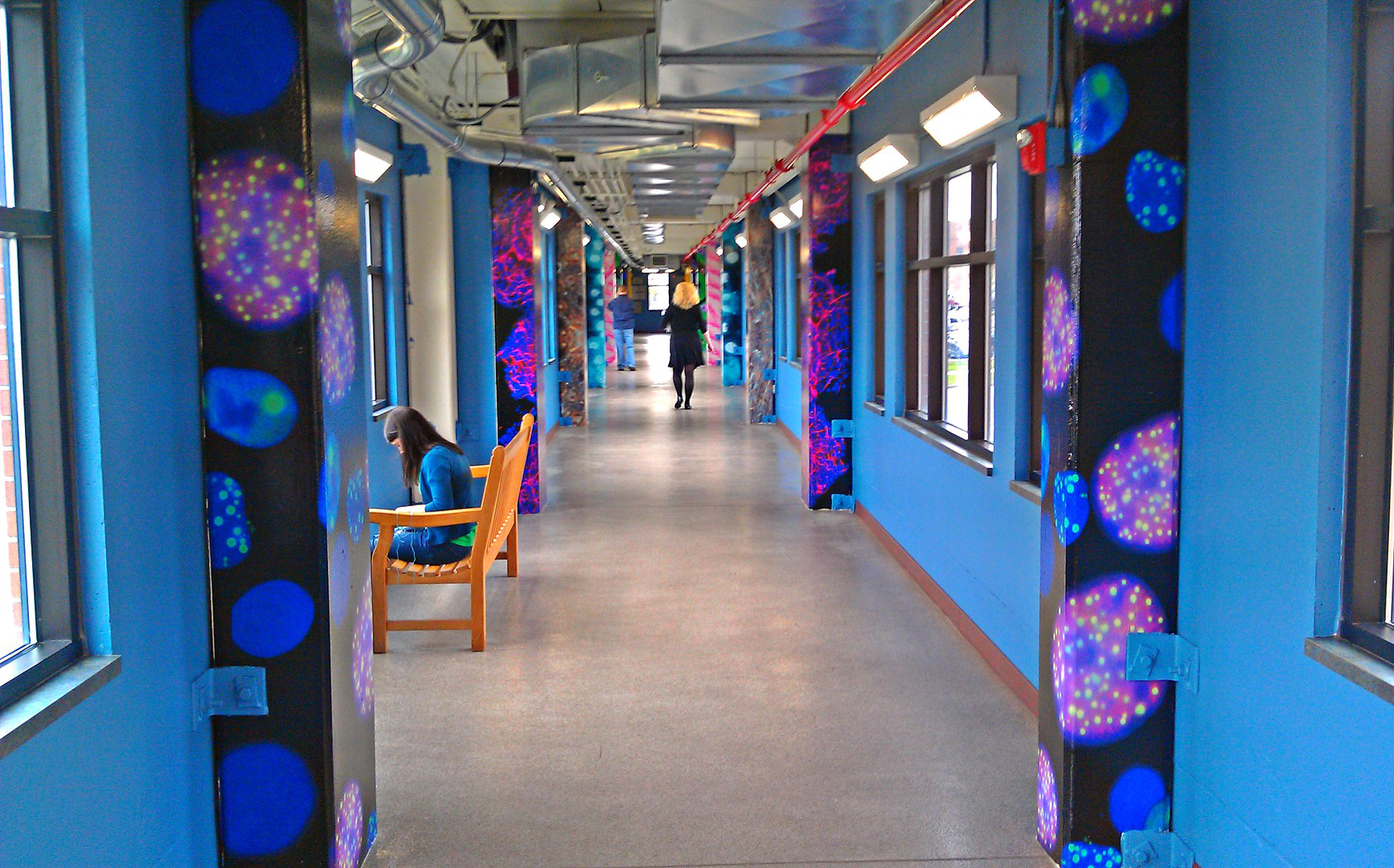 Roswell Park Comprehensive Cancer Institute - Hallway Column Wraps