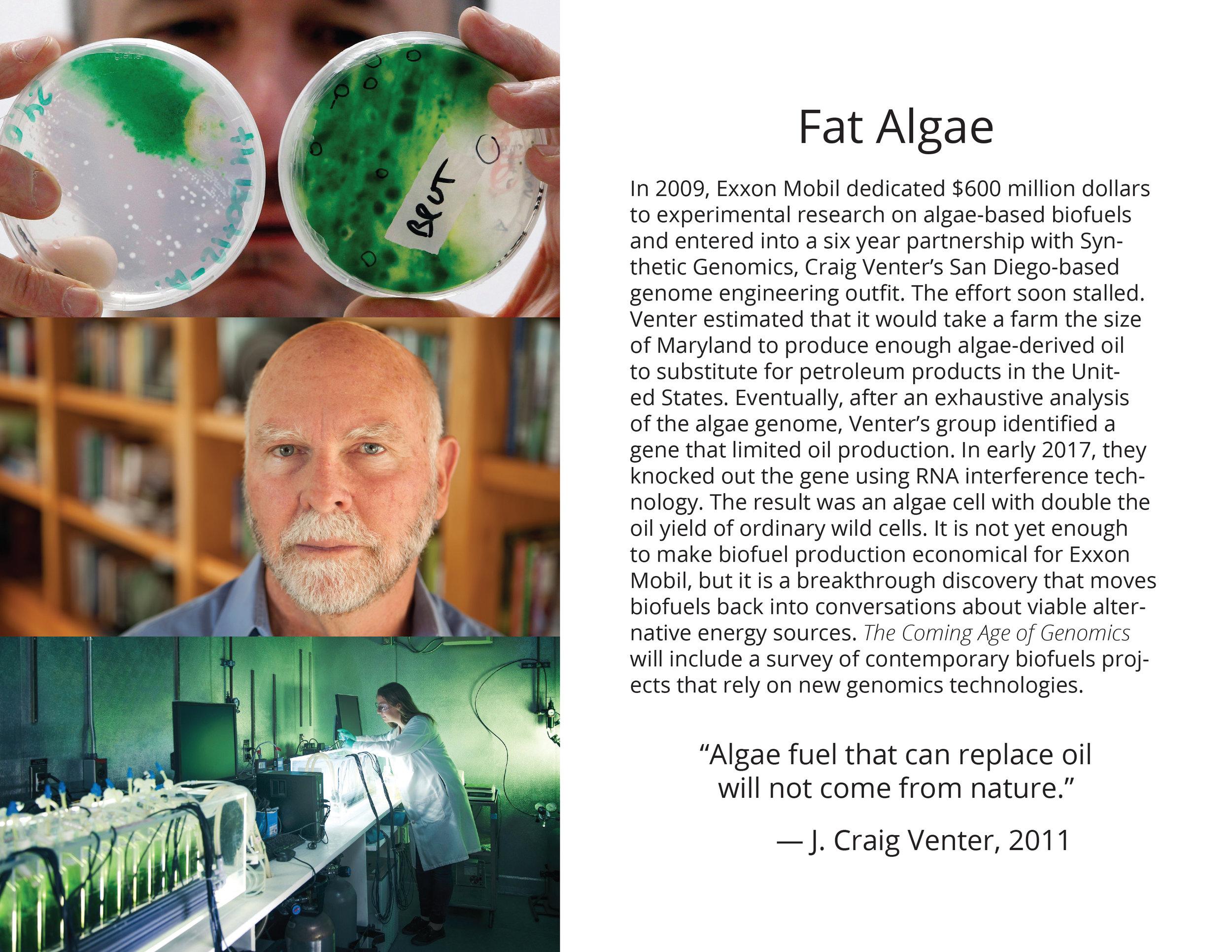 brochure layout pages top bind-28.jpg