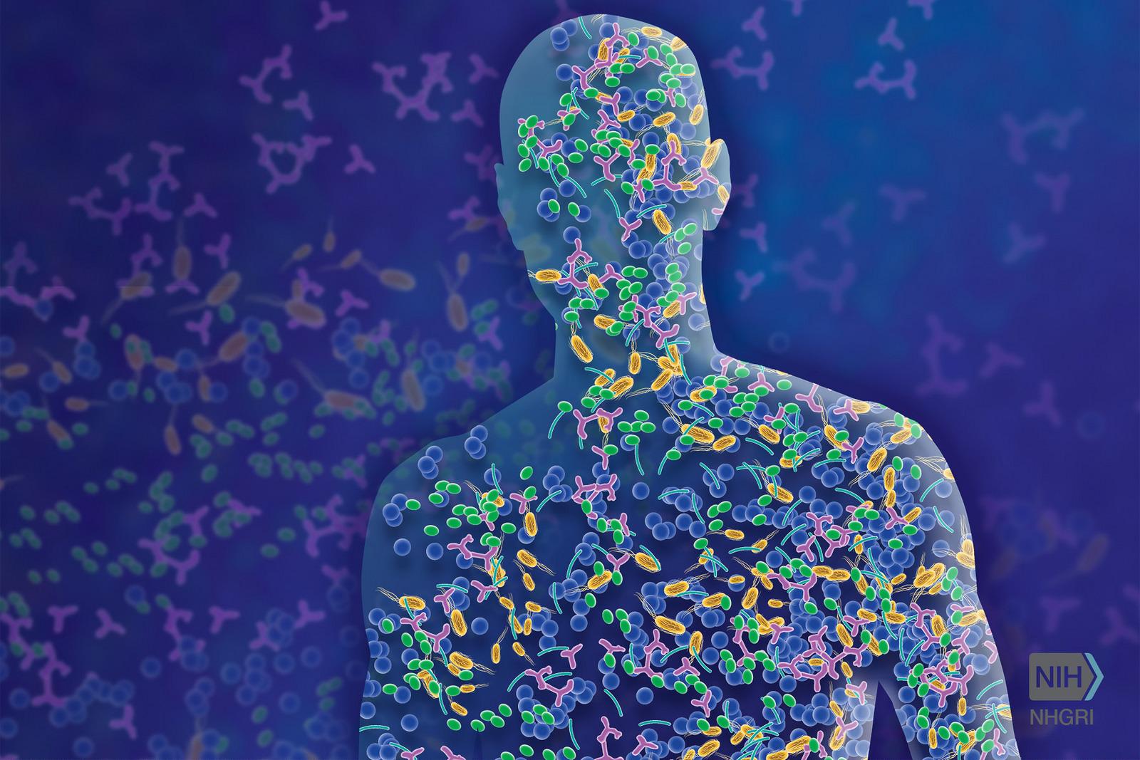 Life Companions: Microbiomes