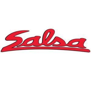 salsa-logo-300x300_large.jpg