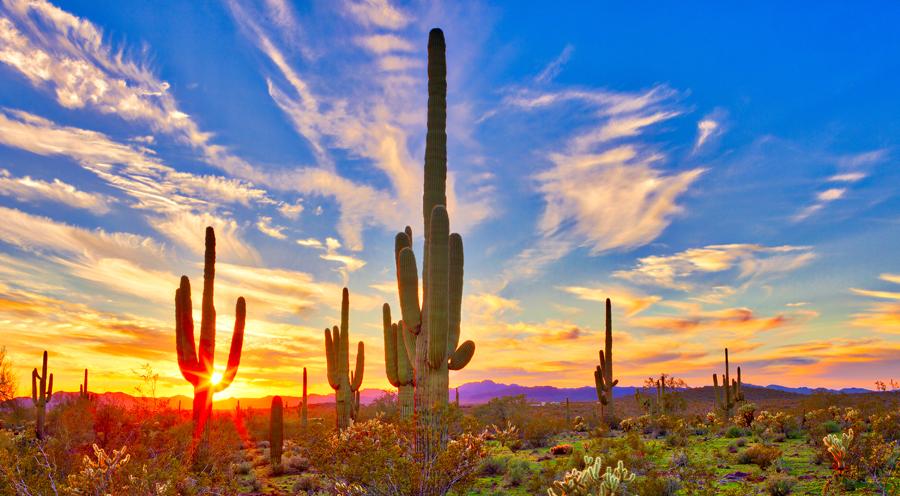 Arizona Mortgage Expo 2018.jpg