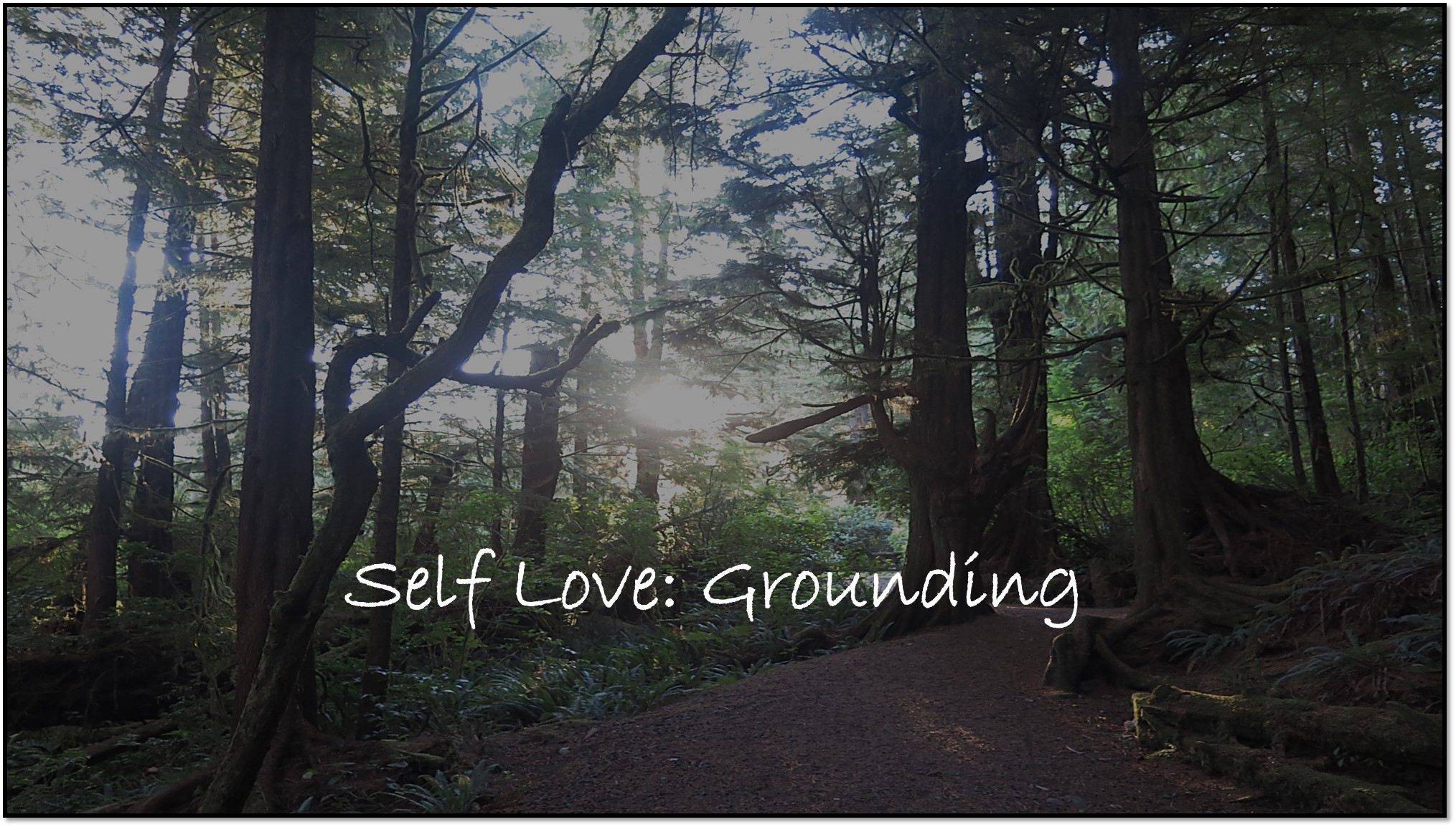Grounding - Feeling disconnected or stressed? Reconnect and ground yourself as you journey to understand the deep roots of a beautiful tree as it's trunk and leaves reach for the universe in perfect balance.