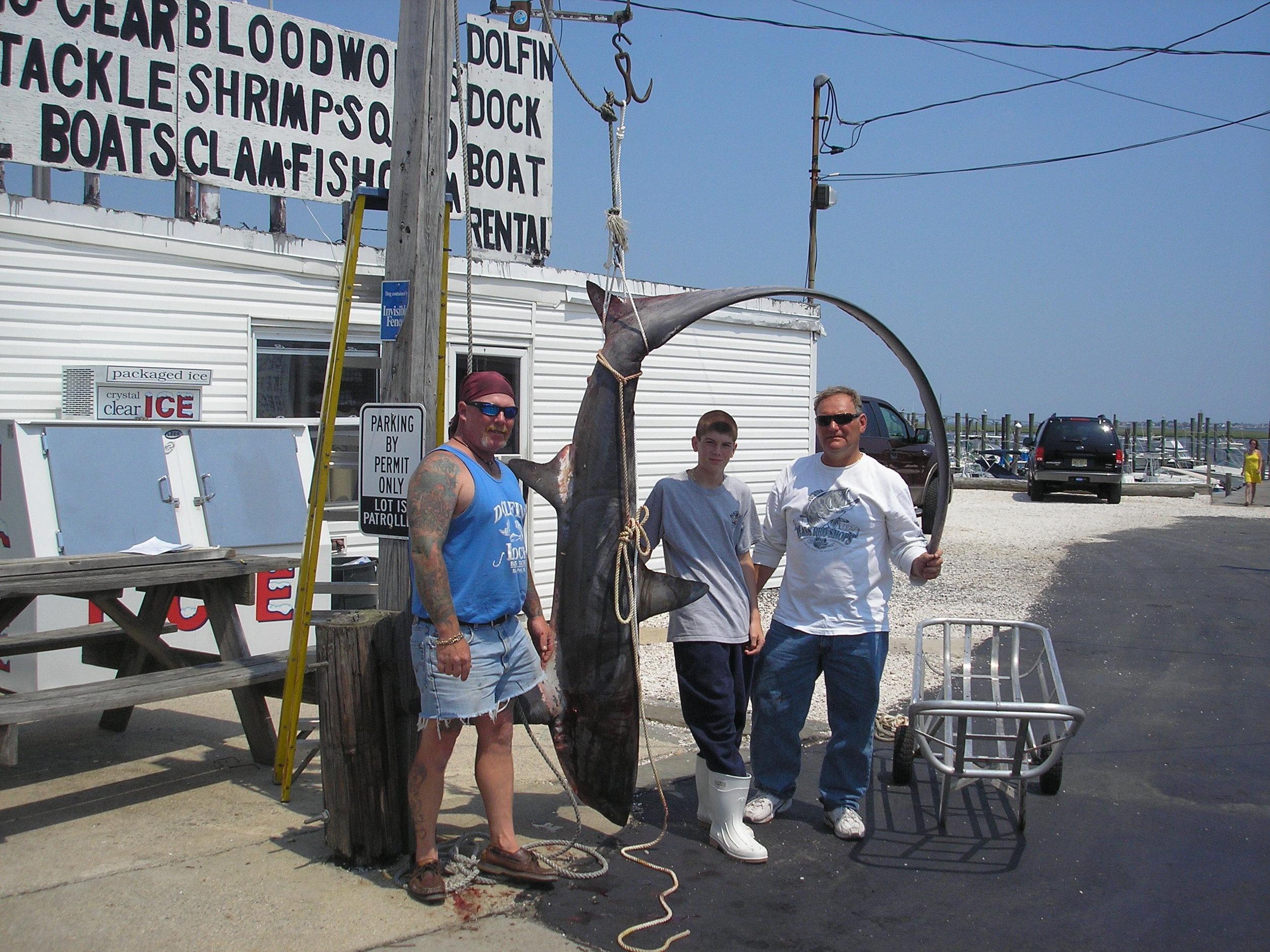 shark 6-17-07 008.jpg
