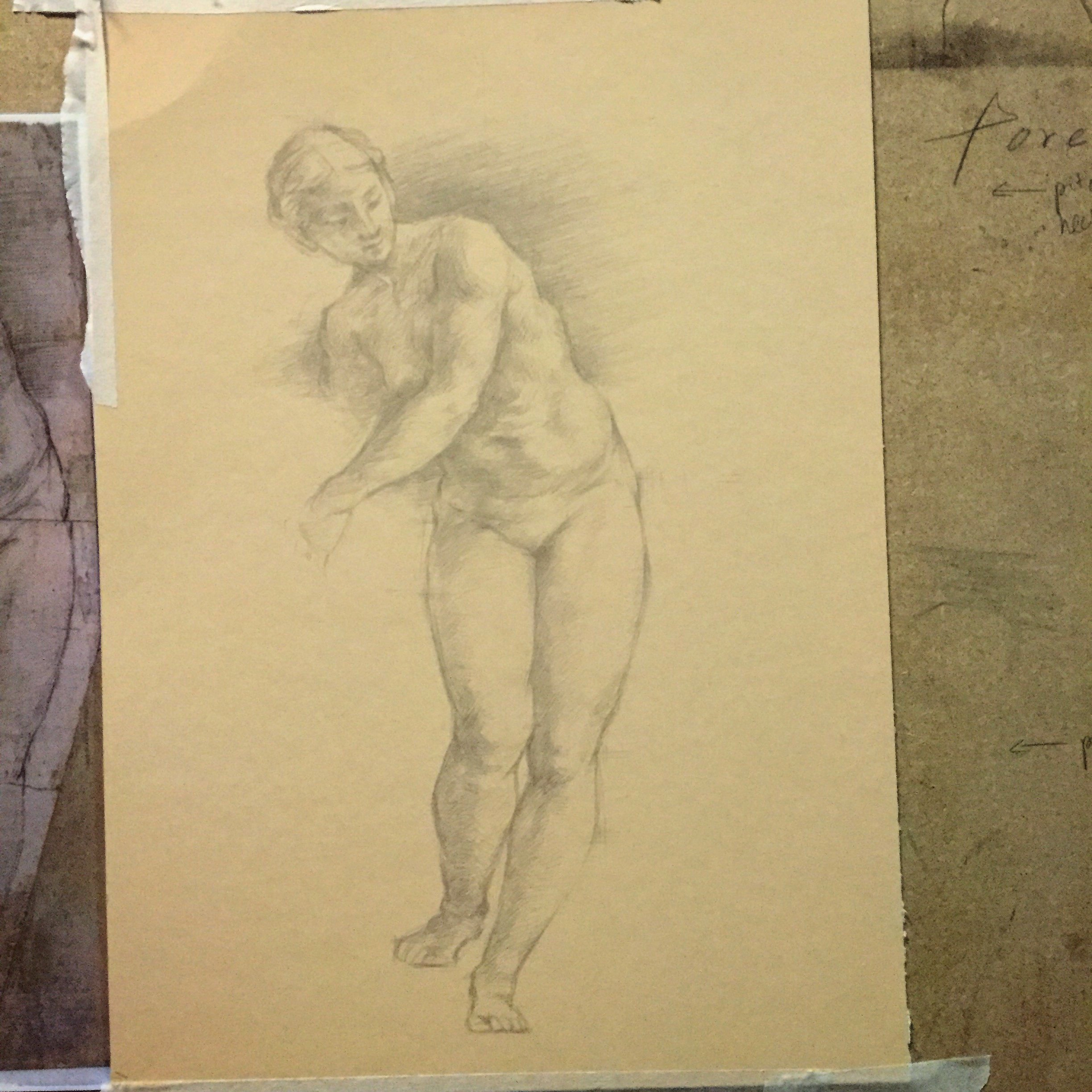 Silverpoint study