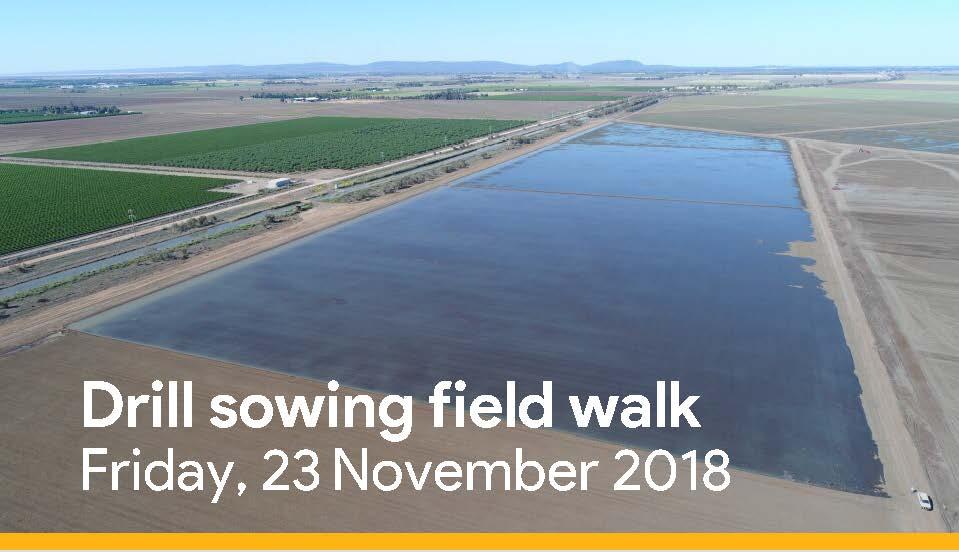 Drill sowing field walk flyer.jpg