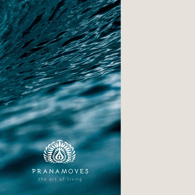 Pranamoves-Logos-2017.jpg