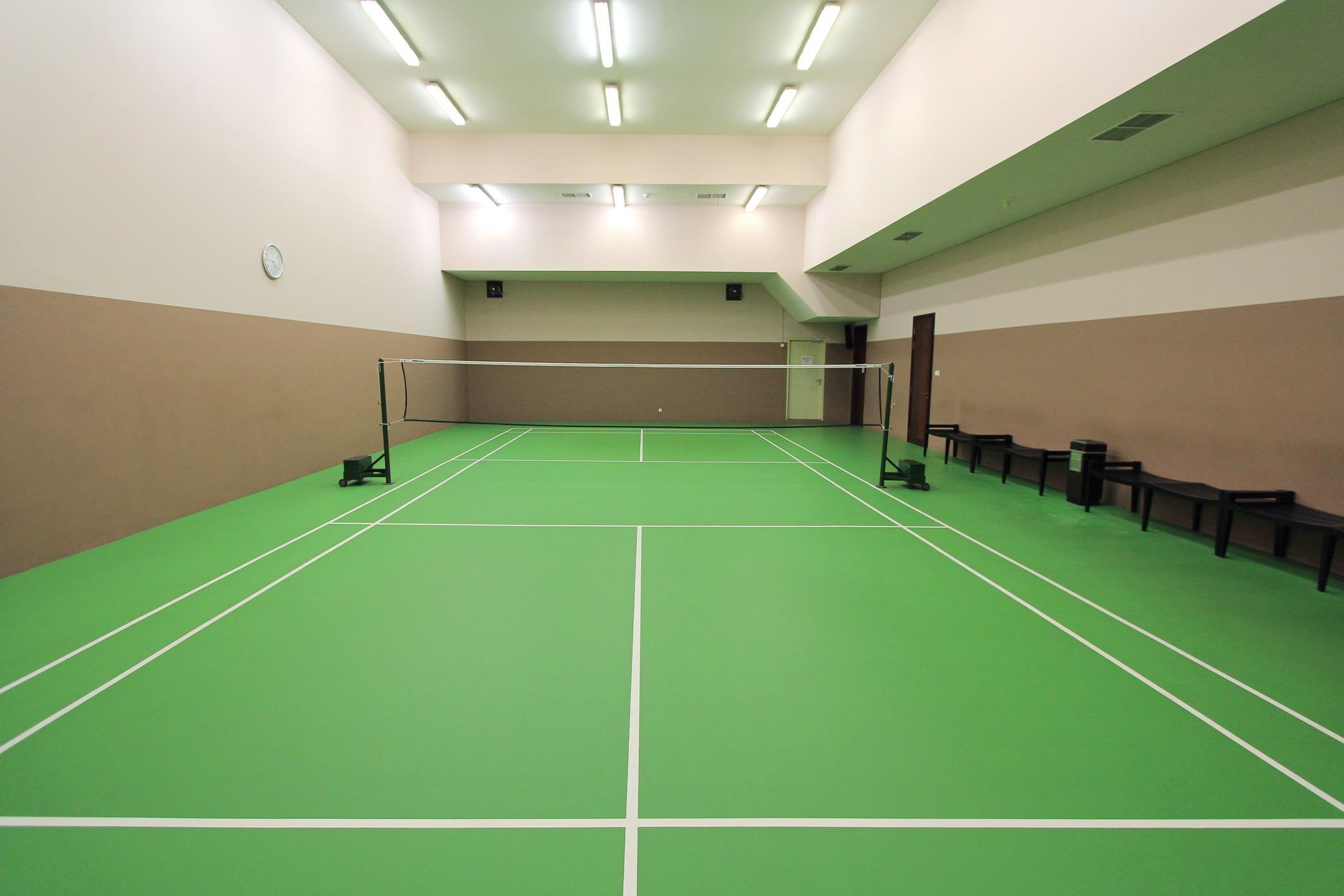 Badminton Court_resize.jpg