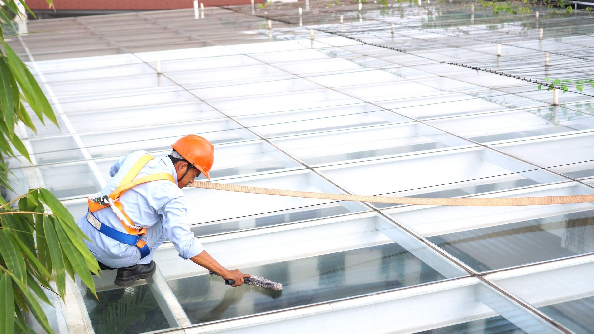 Shining to make sure residents get the natural sunlight they need and love. (Photo:  Dwijaya House of Pakubuwono )