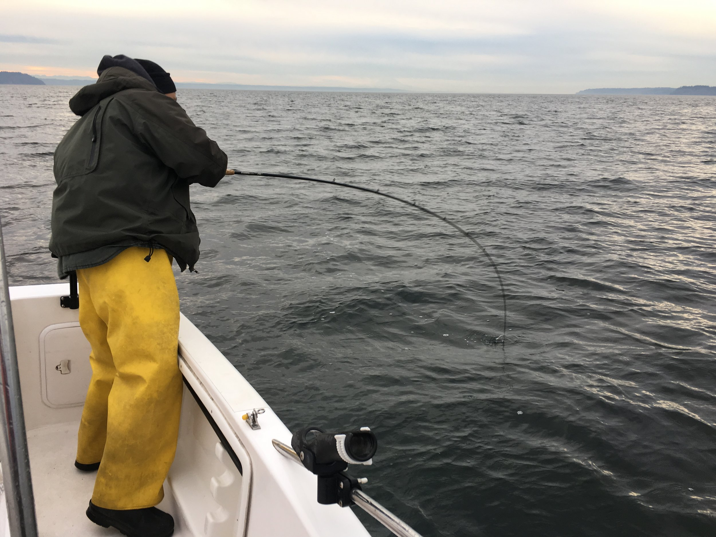Hooked up to a healthy winter Chinook just minutes away from Downtown Seattle