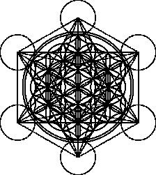 Metatrons-Flower