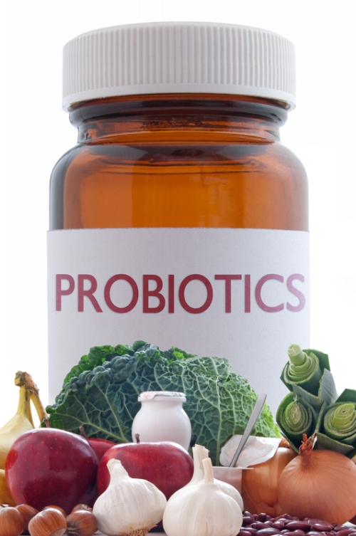 how-to-increase-probiotics-in-your-system