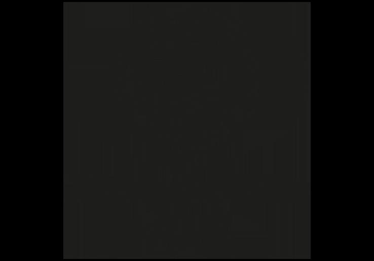 ALF_logo_Orig_Ny_Square_Footer.png