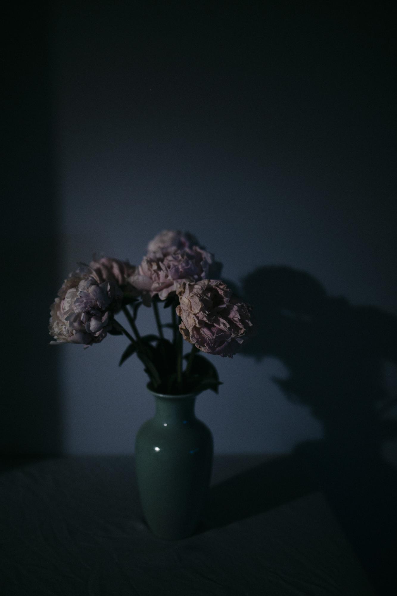 Anna Turner Sydney Photographer-3.jpg