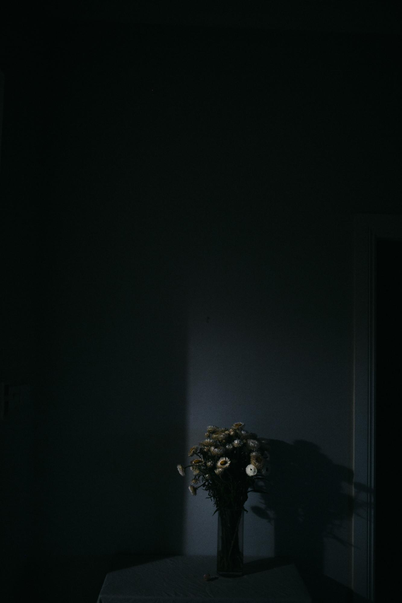 Anna Turner Sydney Photographer-8.jpg