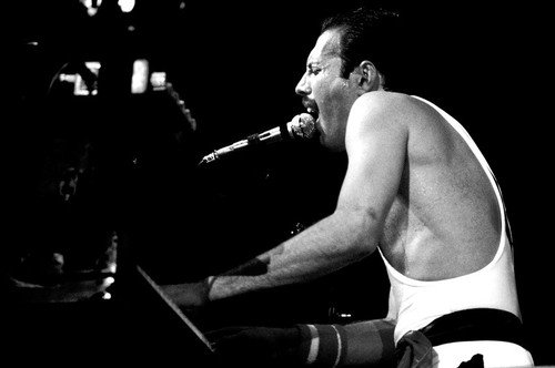 | Freddie Mercury |