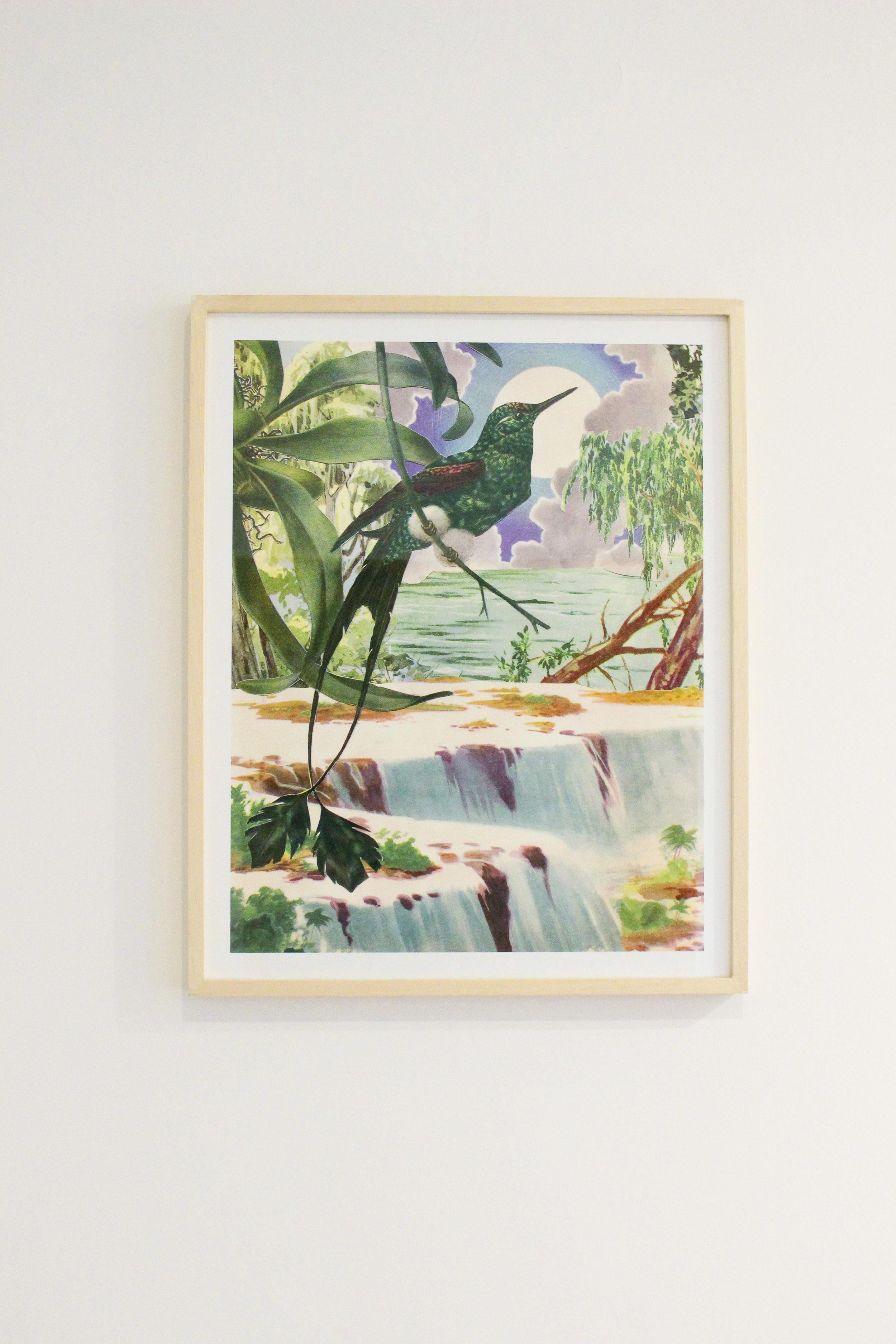 El rio    framed fine art print, limited edition  Canson® Infinity Edition Etching Rag 310 g/m²  65 X 50 CM    6000 ars