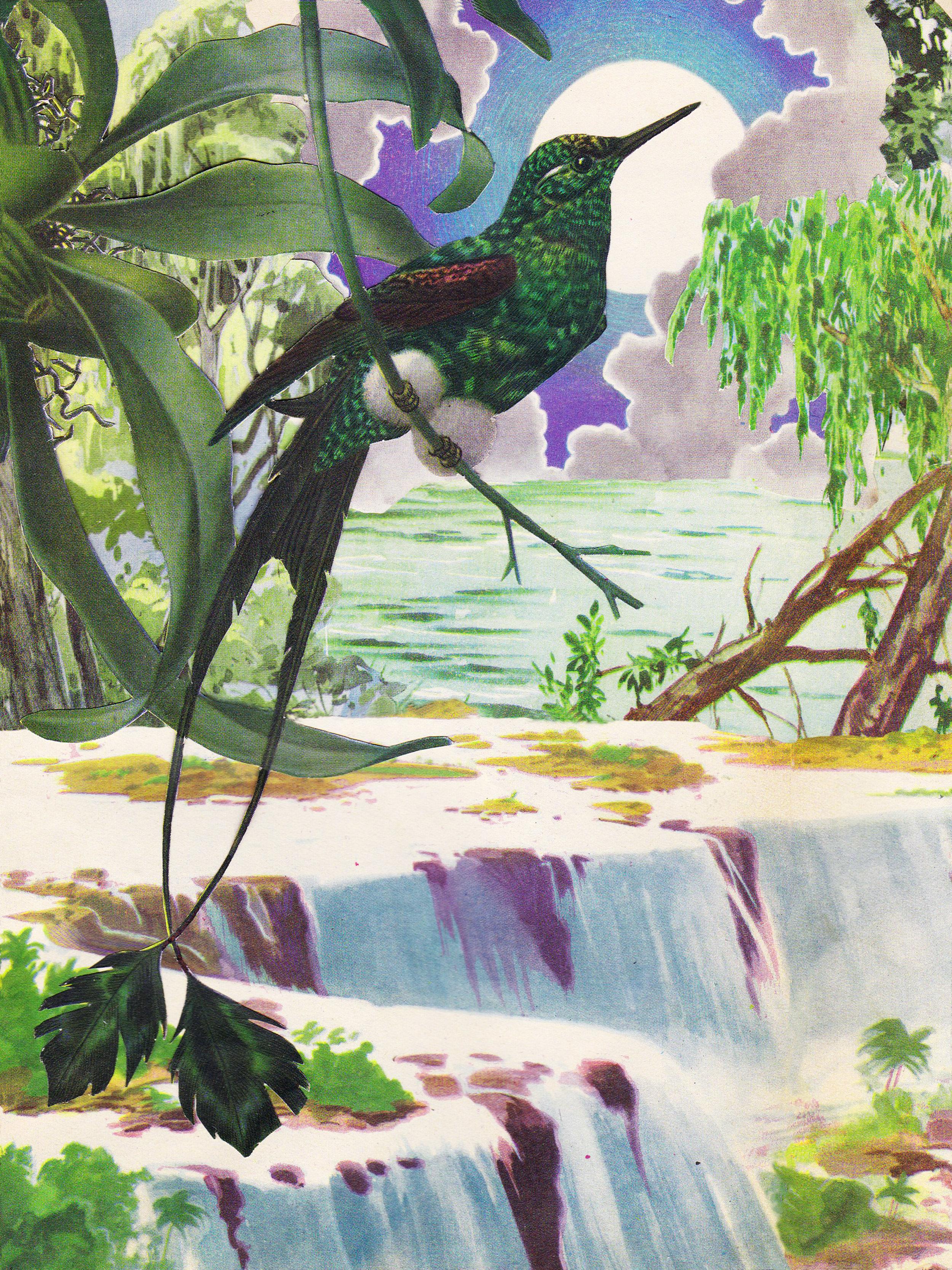 El rio    fine art print, limited edition  Canson® Infinity Edition Etching Rag 310 g/m²  65 X 50 CM    4000 ars