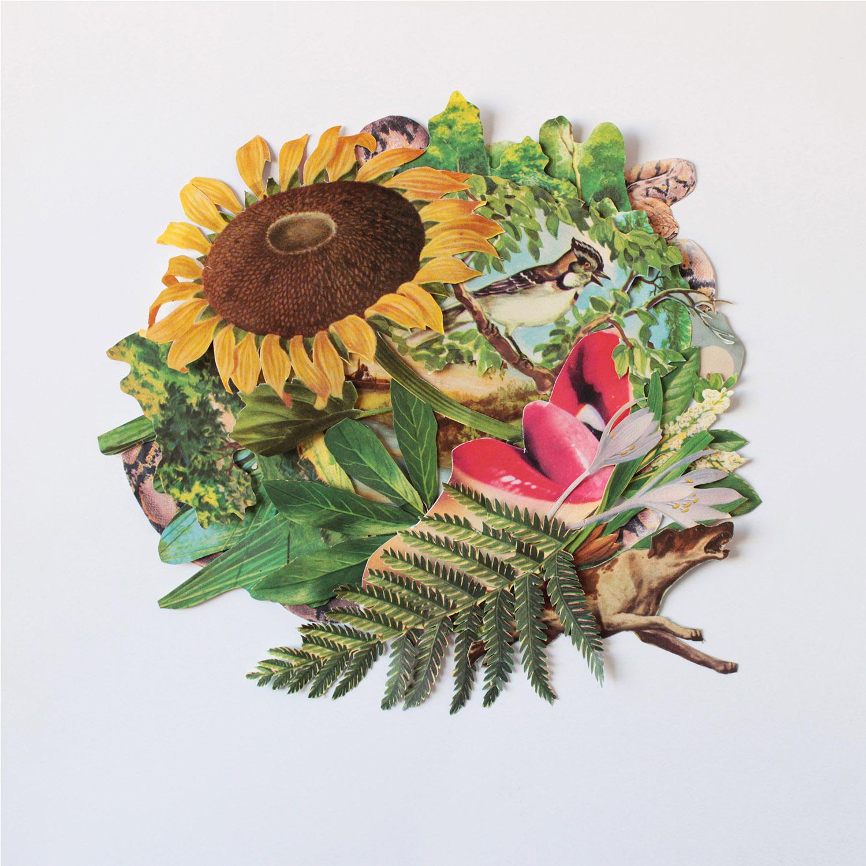 erótica    fine art print, limited edition  Canson® Infinity Edition Etching Rag 310 g/m²  30 x 30 CM    2000 ars