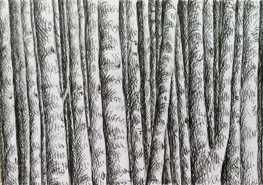 Plume sur papier, 10-5 cm X 7.5 cm , 2016.JPG